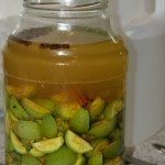 Народные рецепты из зеленых грецких орехов